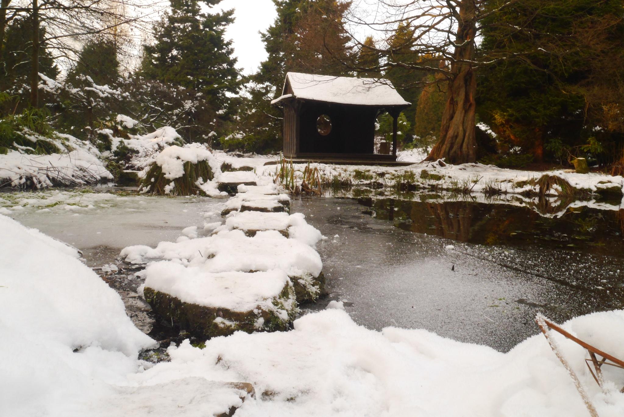 Snowy Path by Kabbij