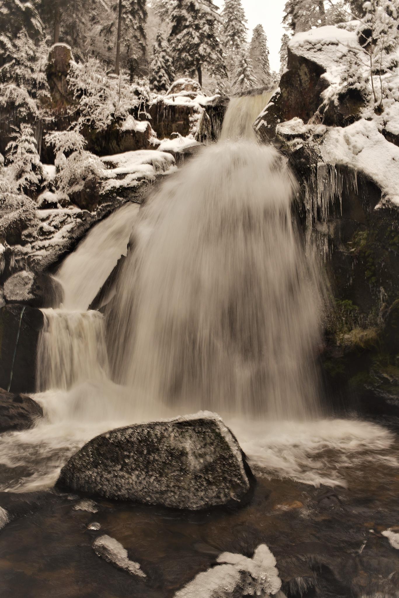 Triberg Waterfalls by hananel hebe