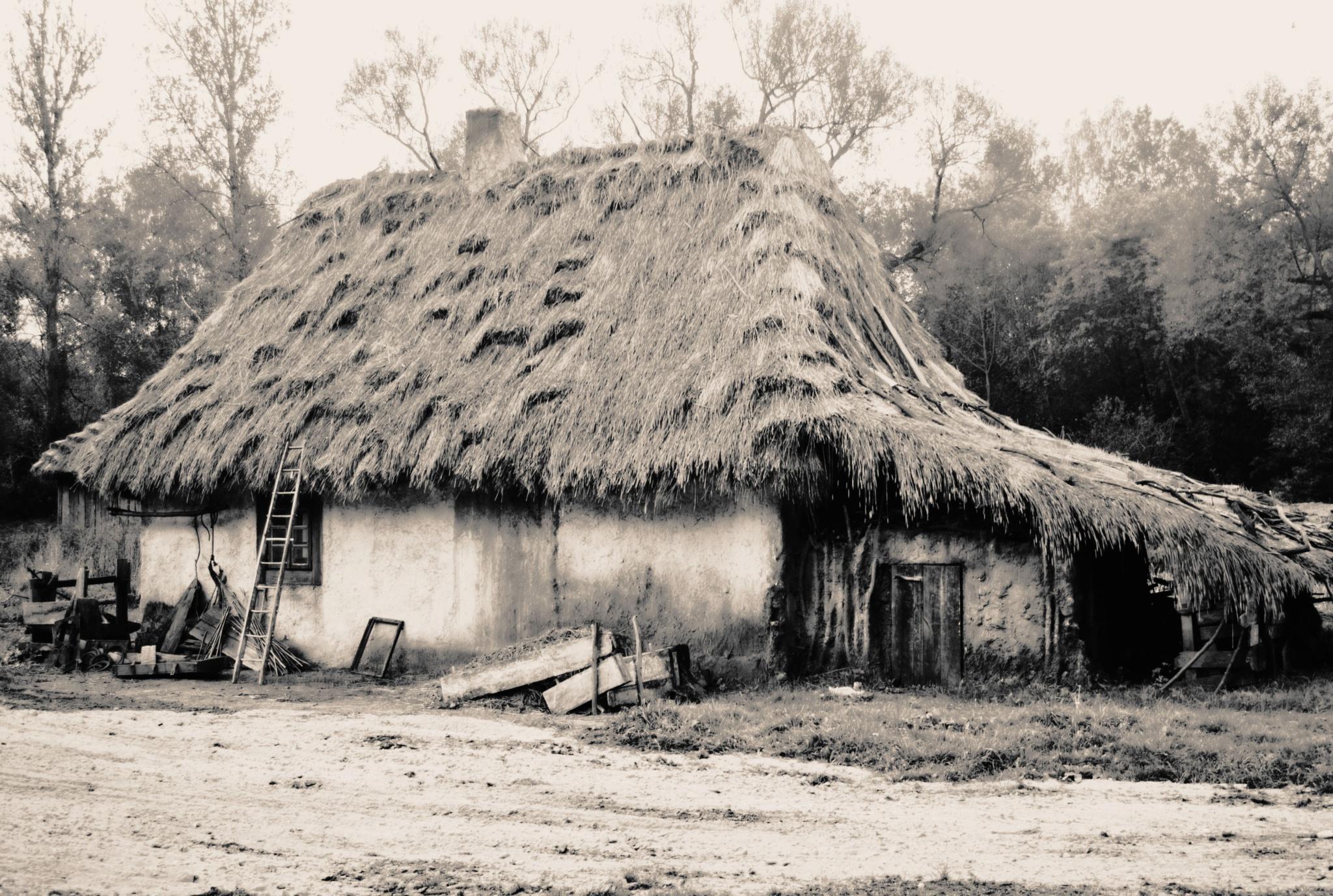 Old house by Piotr Gołebiowski