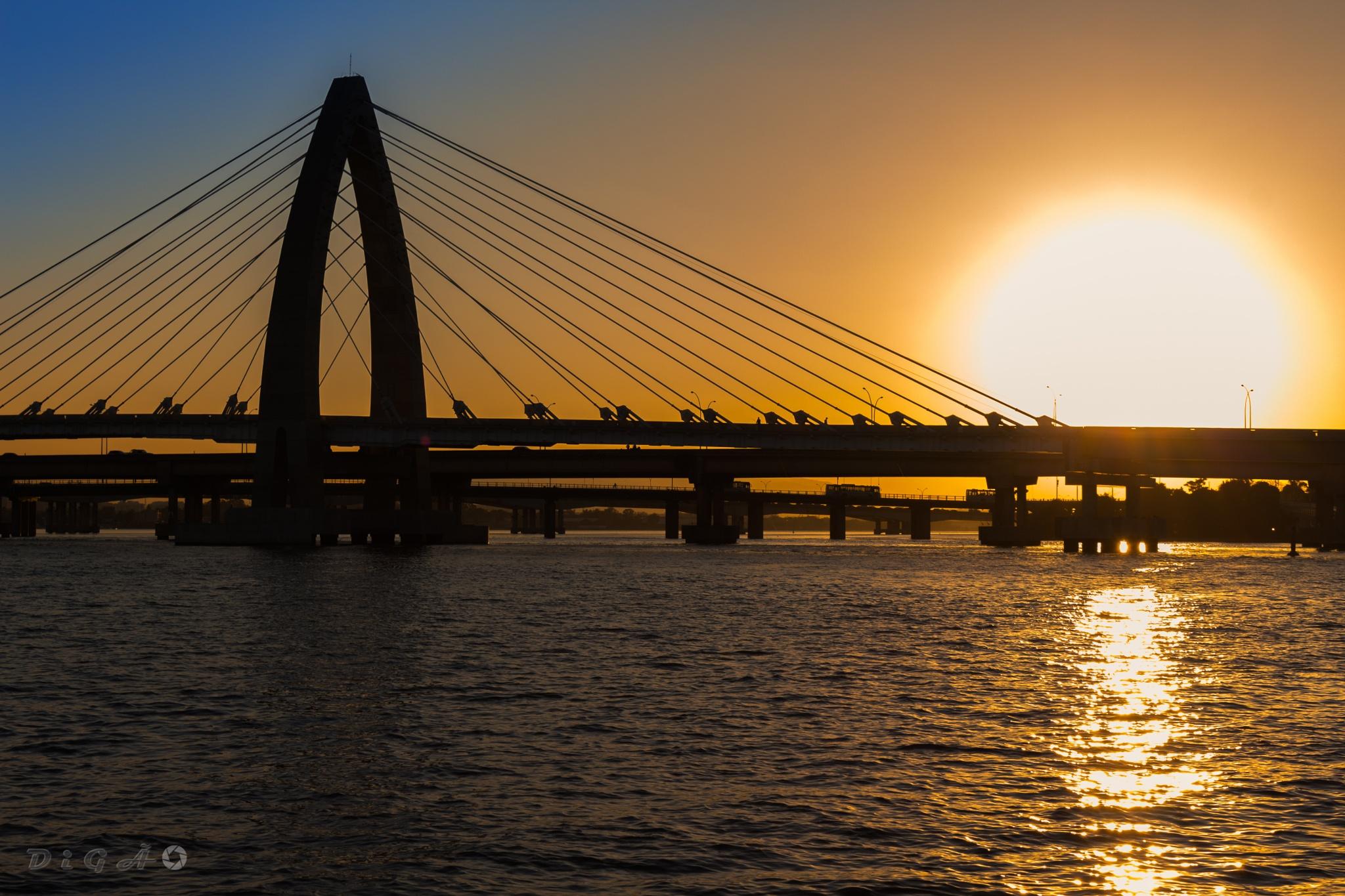 Ponte do BRT (Prefeito Pereira Passos) - RJ by Digão Saldanha