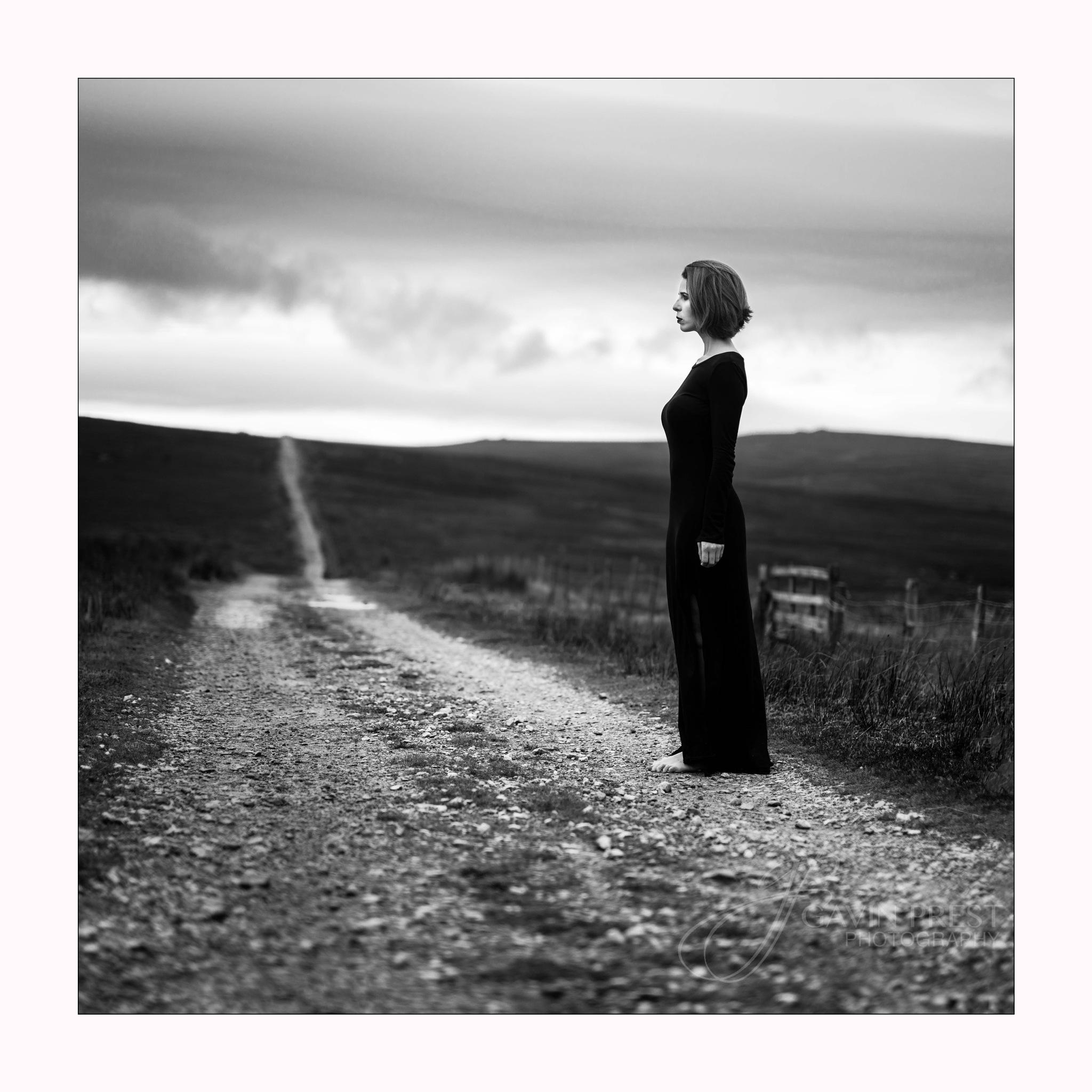 Alone by Gavin Prest