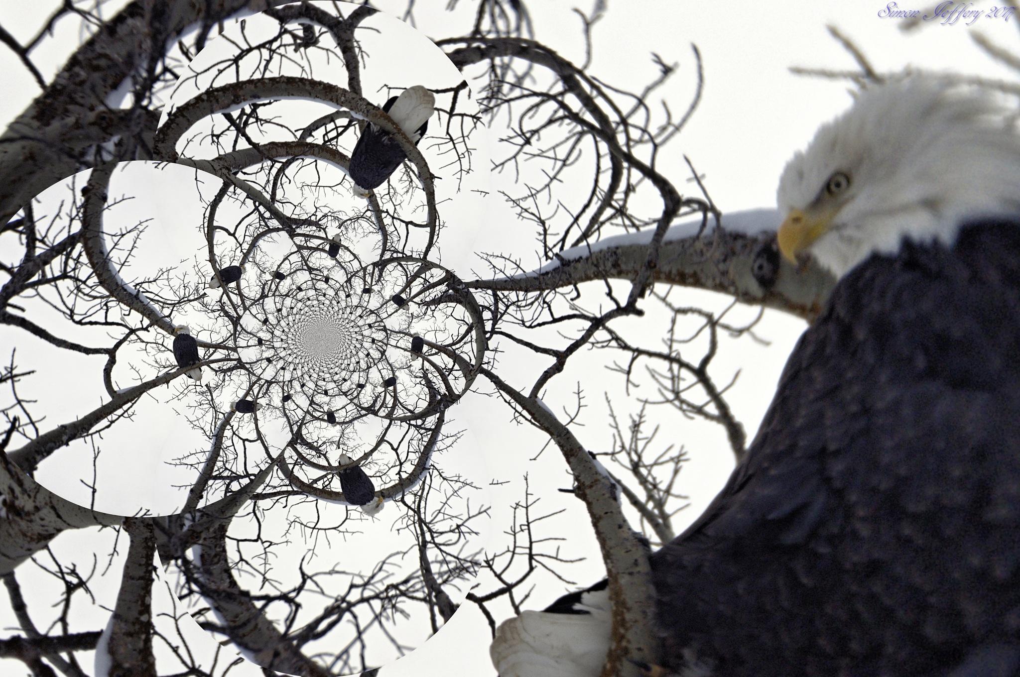 CG tree of eagles by Simon Jeffery