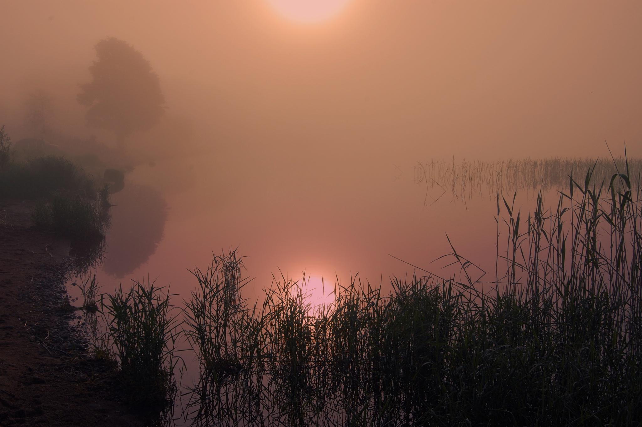 Lake Seliger by Michael Stapfer