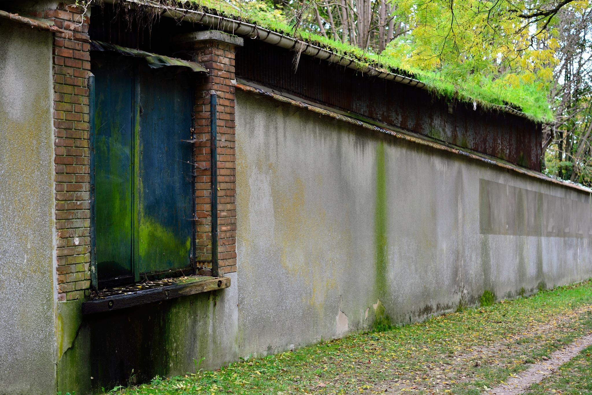 Mur d'enceinte en automne by trsor7