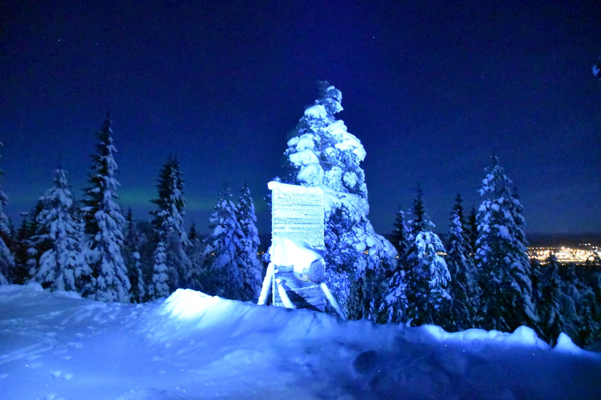 Late walk in the moonlight by Susanne Olsson