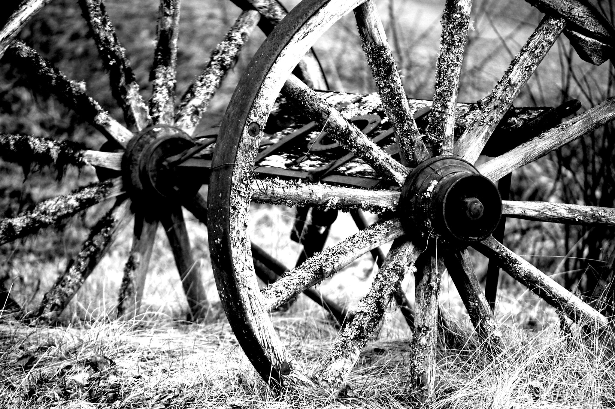 Old wheels by Susanne Olsson