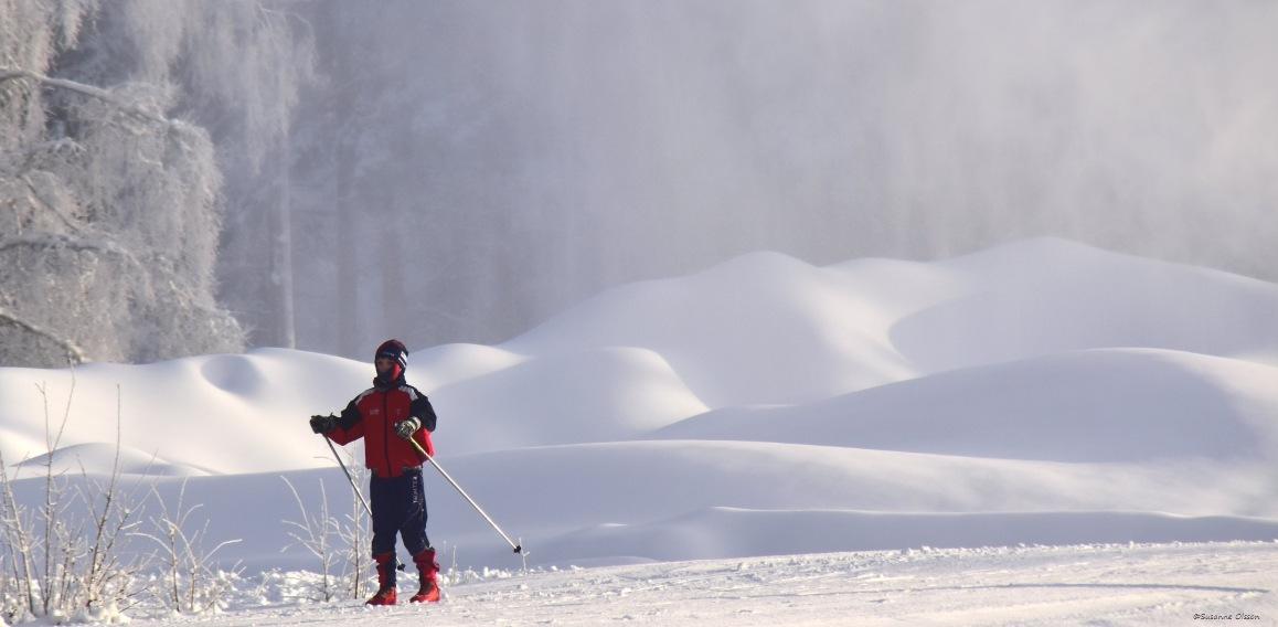 I skidspåret by Susanne Olsson