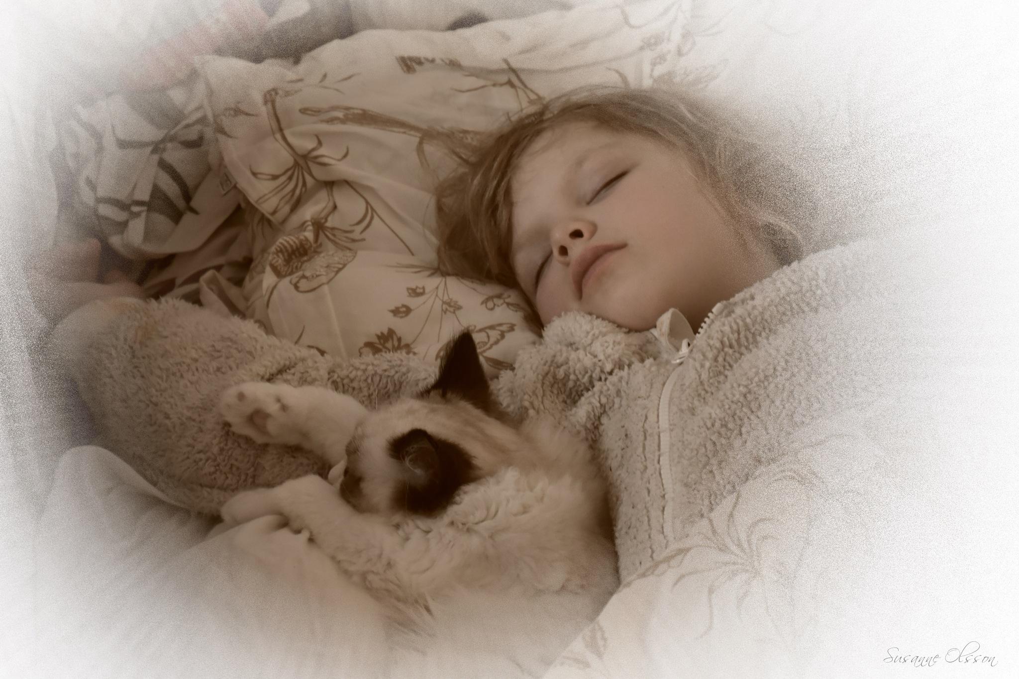 Sömniga sötnosar by Susanne Olsson