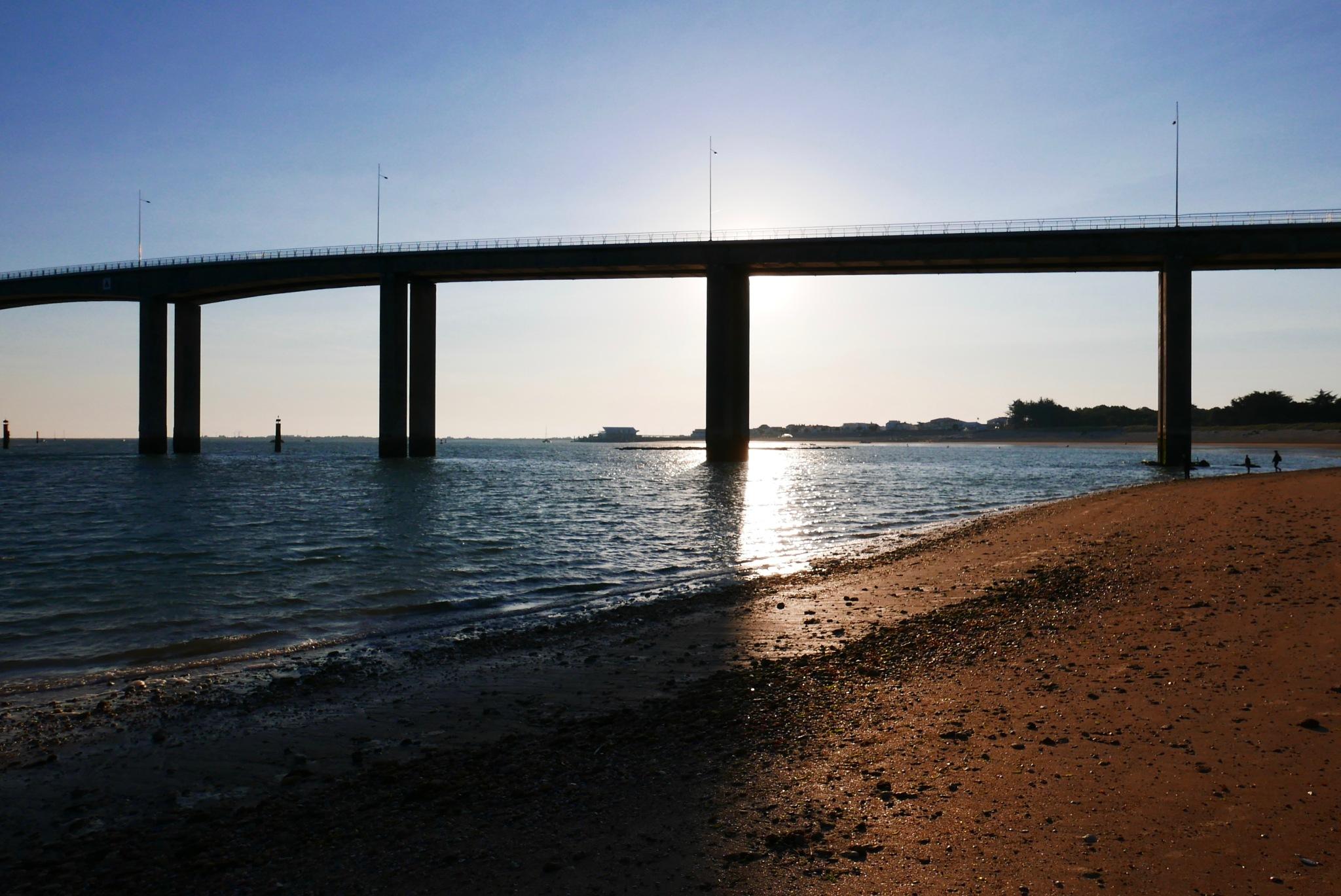 architecture bridge by lallemand