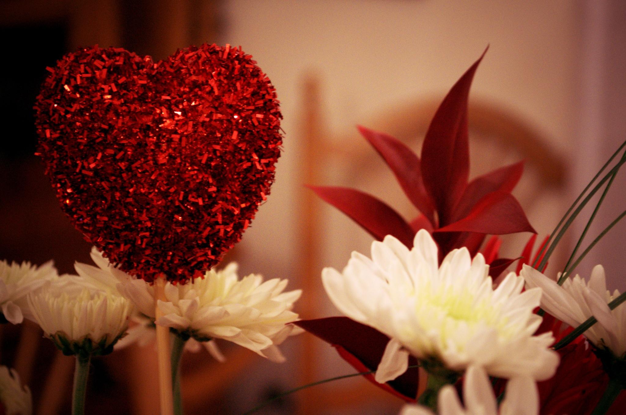 Valentines flowers by Trevor Smith