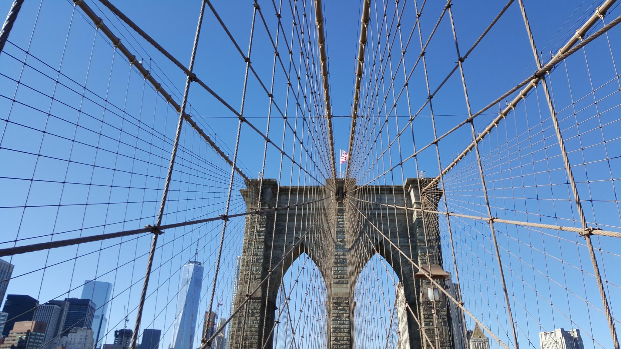 Brooklyn Bridge  by Roselene Dolce