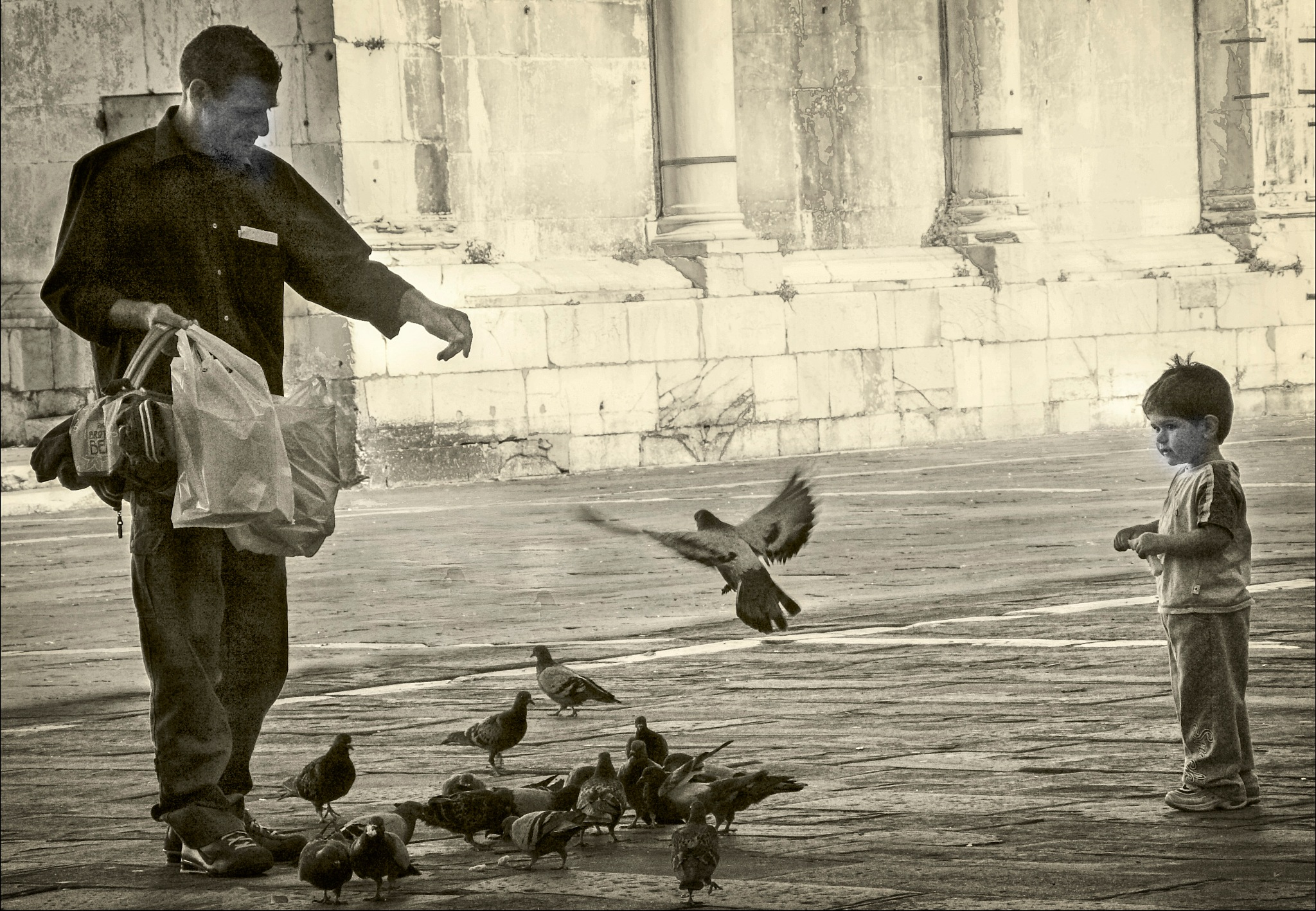 Photo in Street Photography #italy #lucca #tuscany #boy #father #pidgeons #fascination #family #old #birds