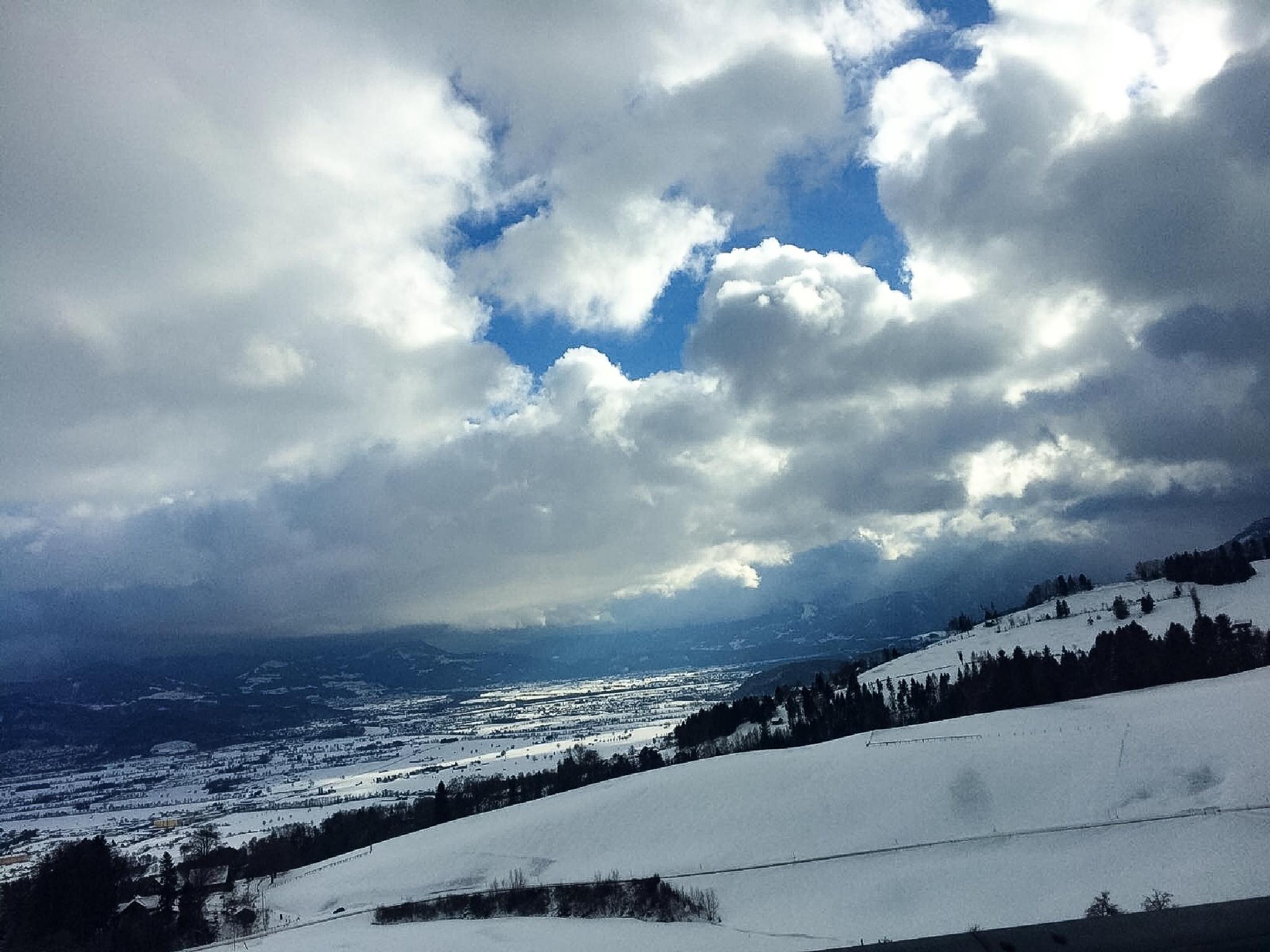 Snowland by Viola Violet