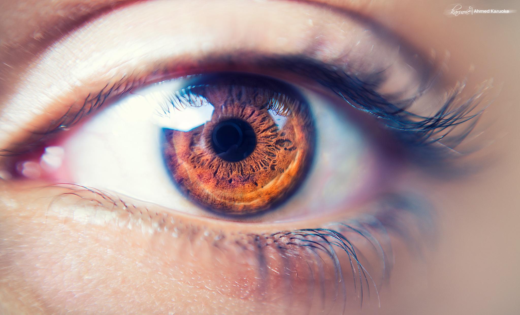 Macro Eye  by Ahmed Karuoke