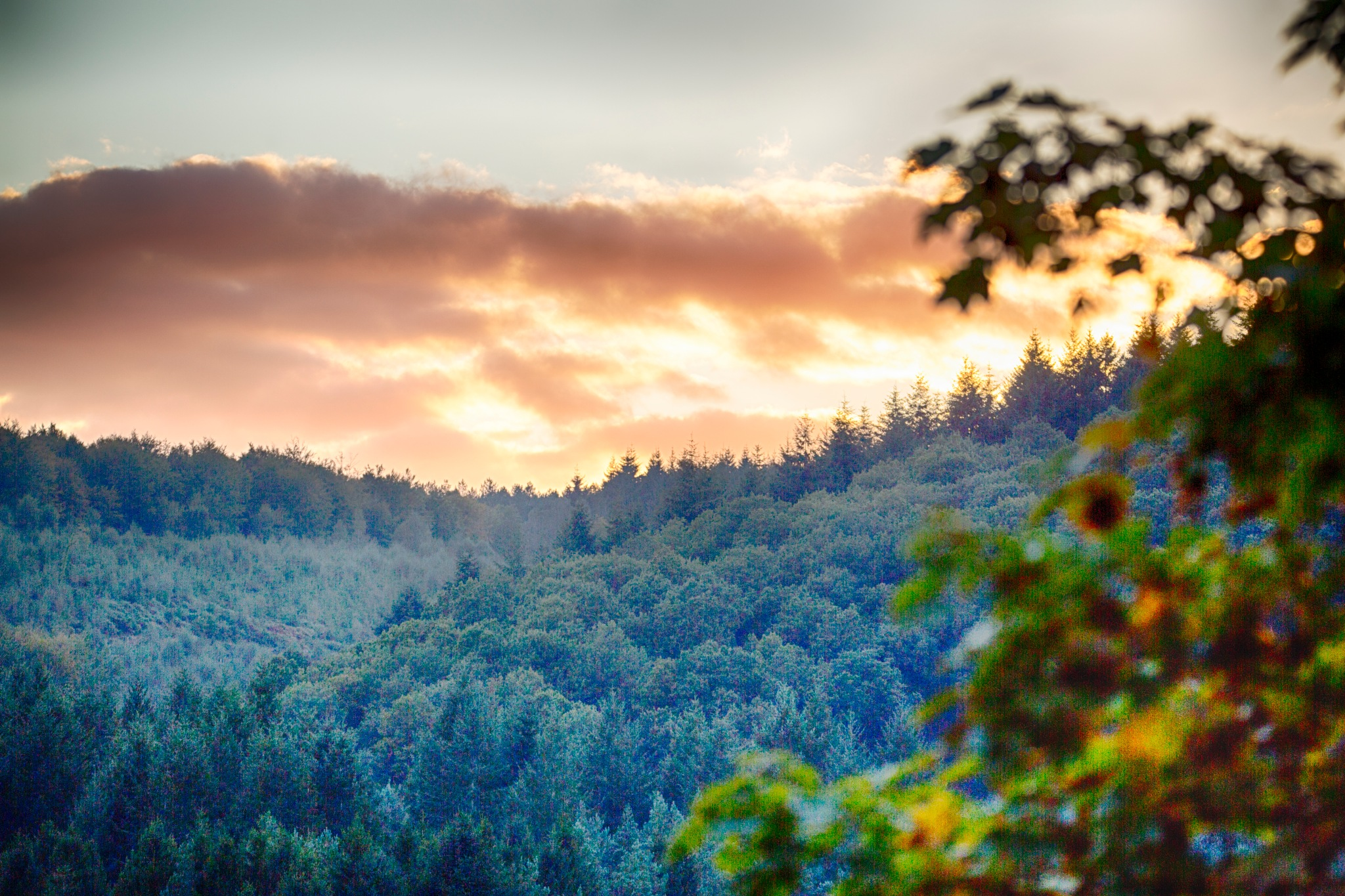 sunset over the Forest Of Dean  by photogaphotography