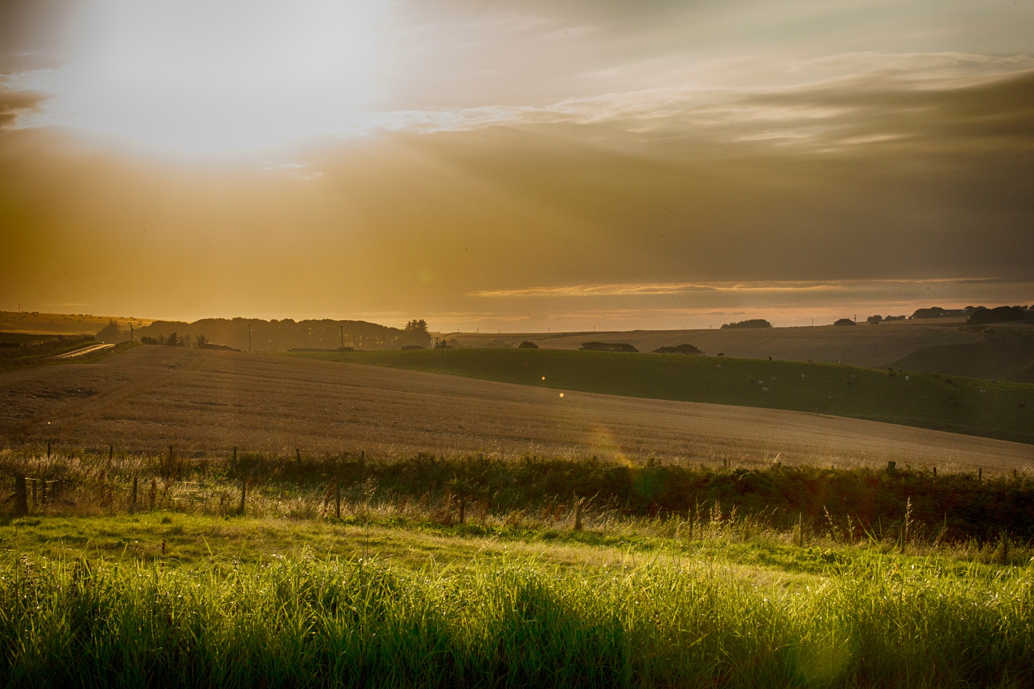 Our Land England I love you  by photogaphotography