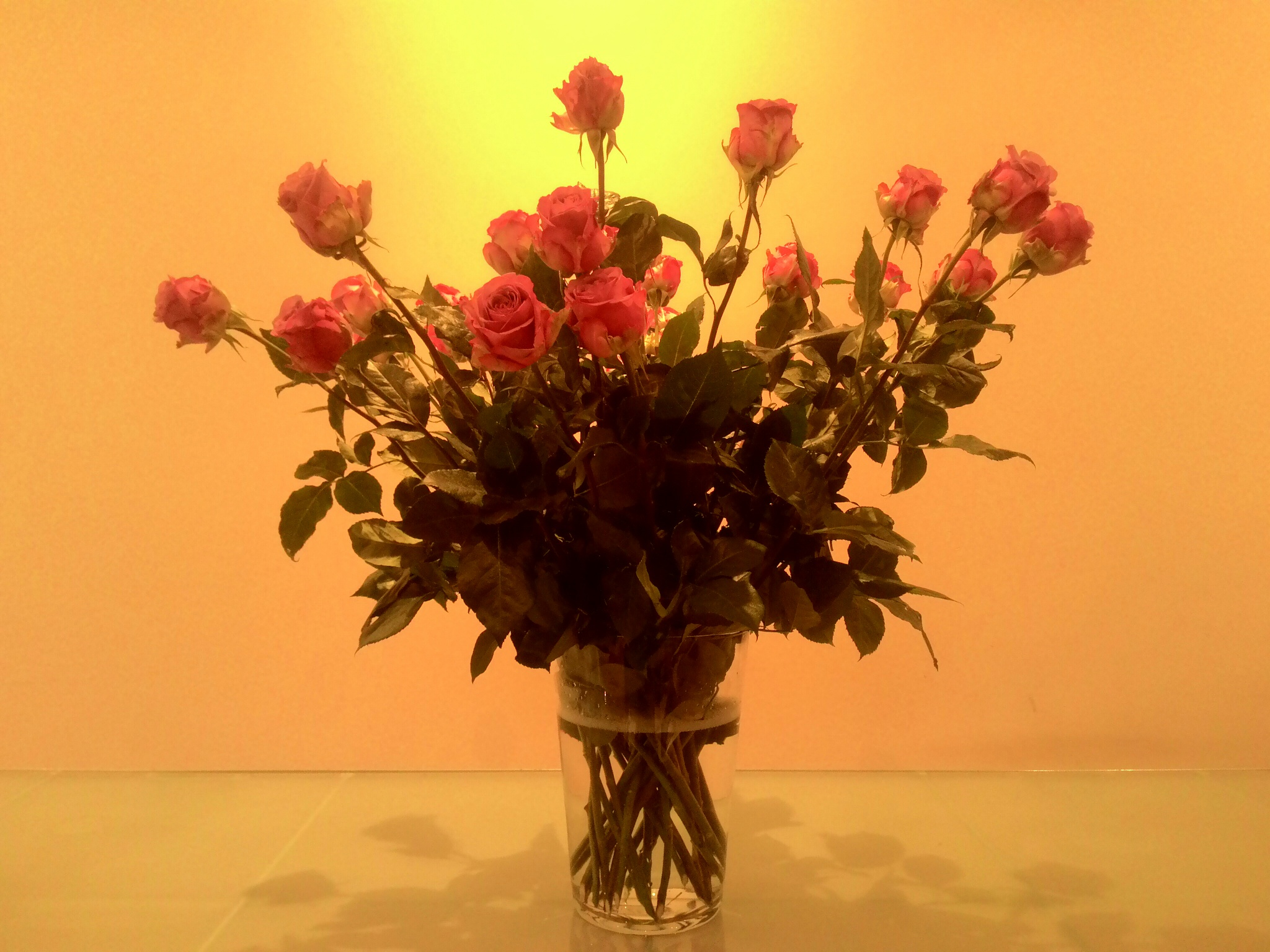 Still love You by vinzarka