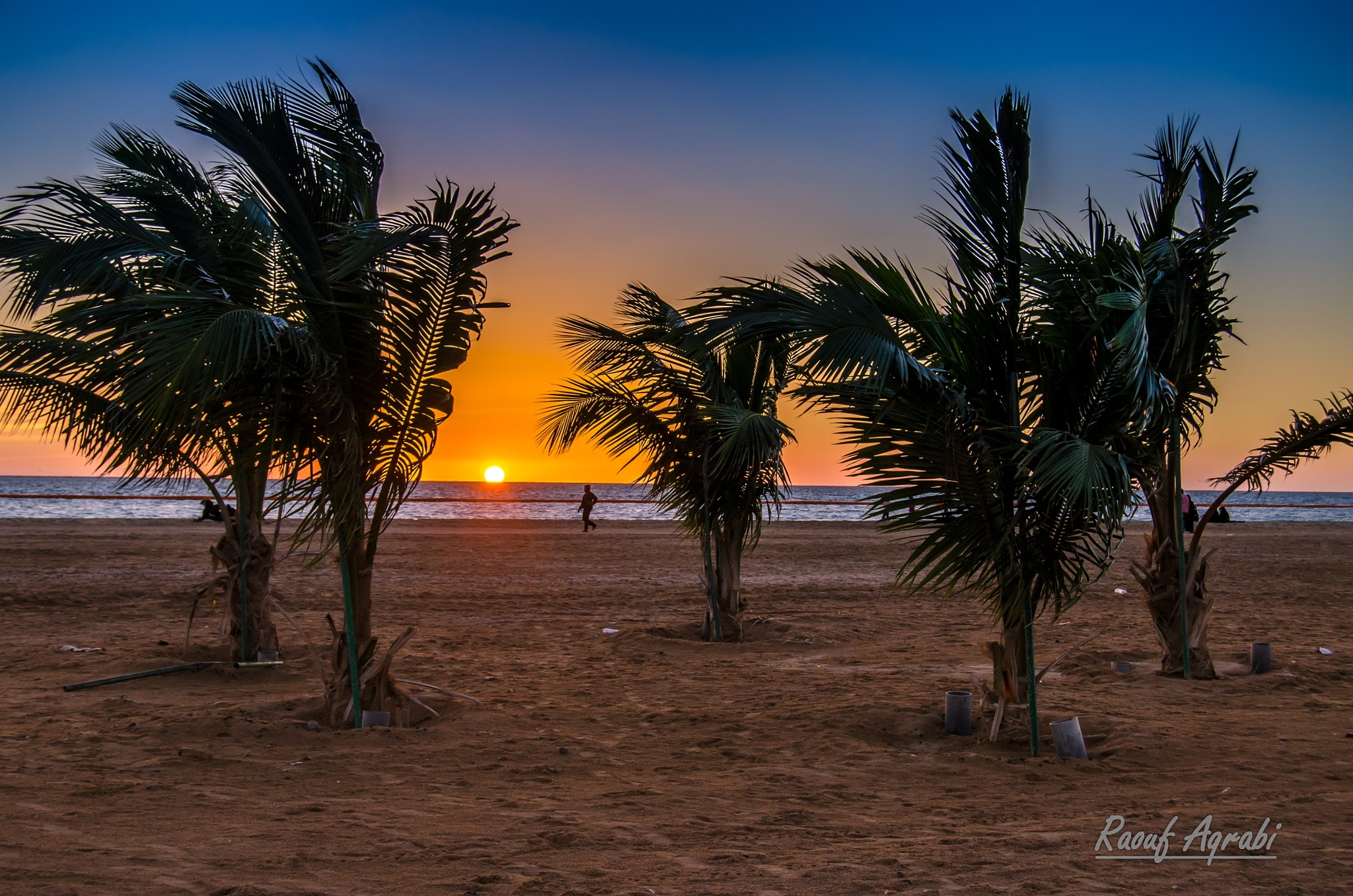 palms, beach and sunset  by Raouf Aqrabi
