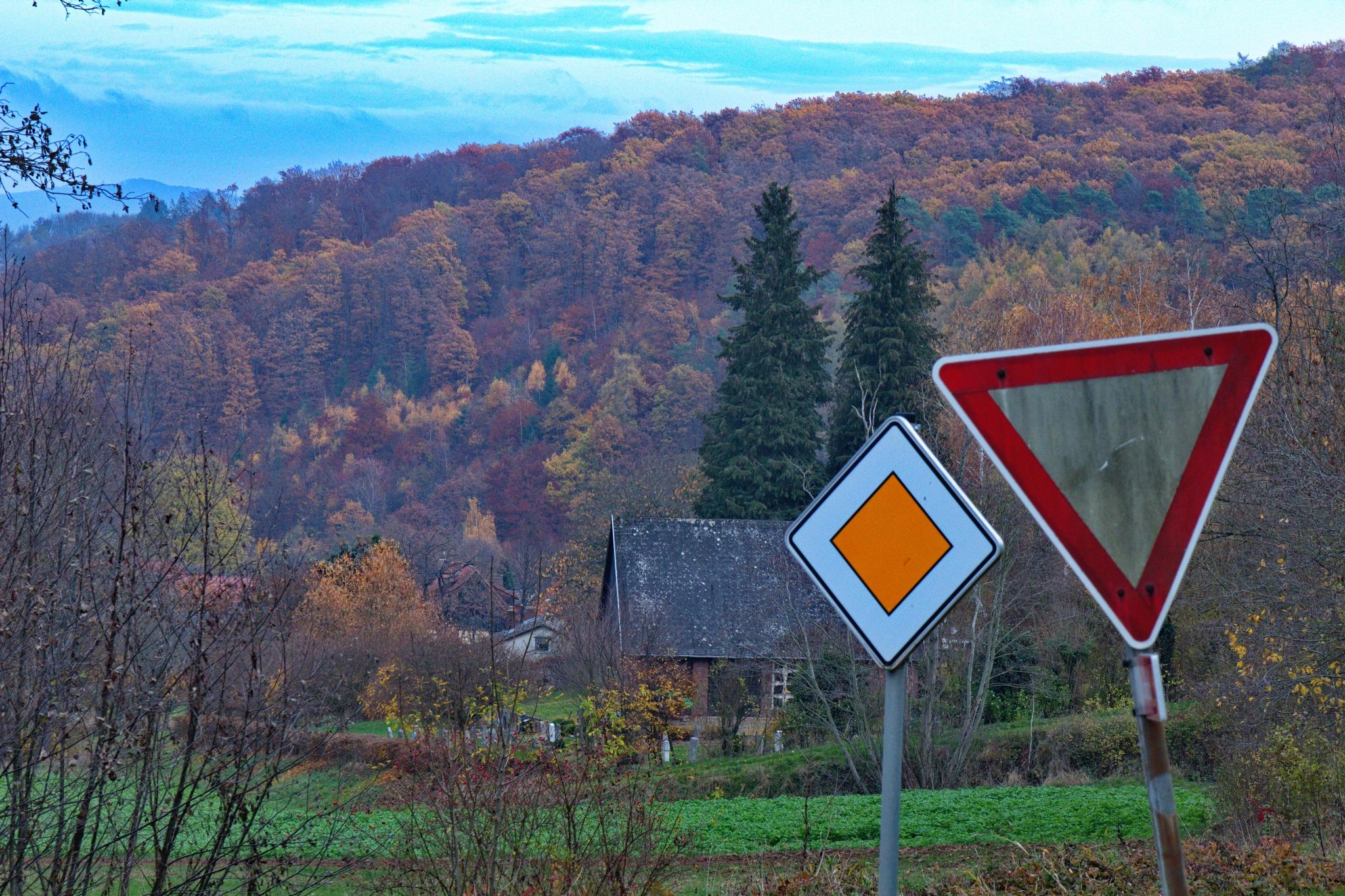 Herbst by Rolf-Dieter Balindt