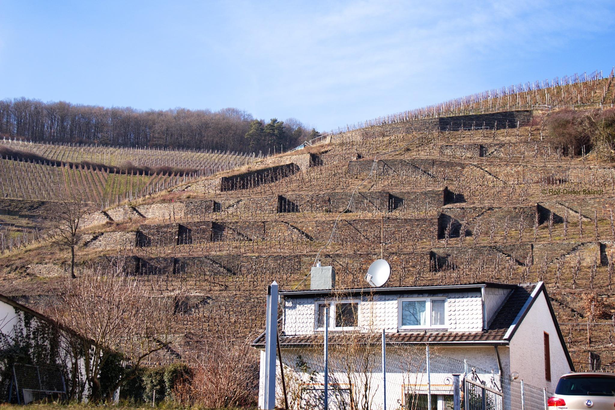 Ahrweiler by Rolf-Dieter Balindt