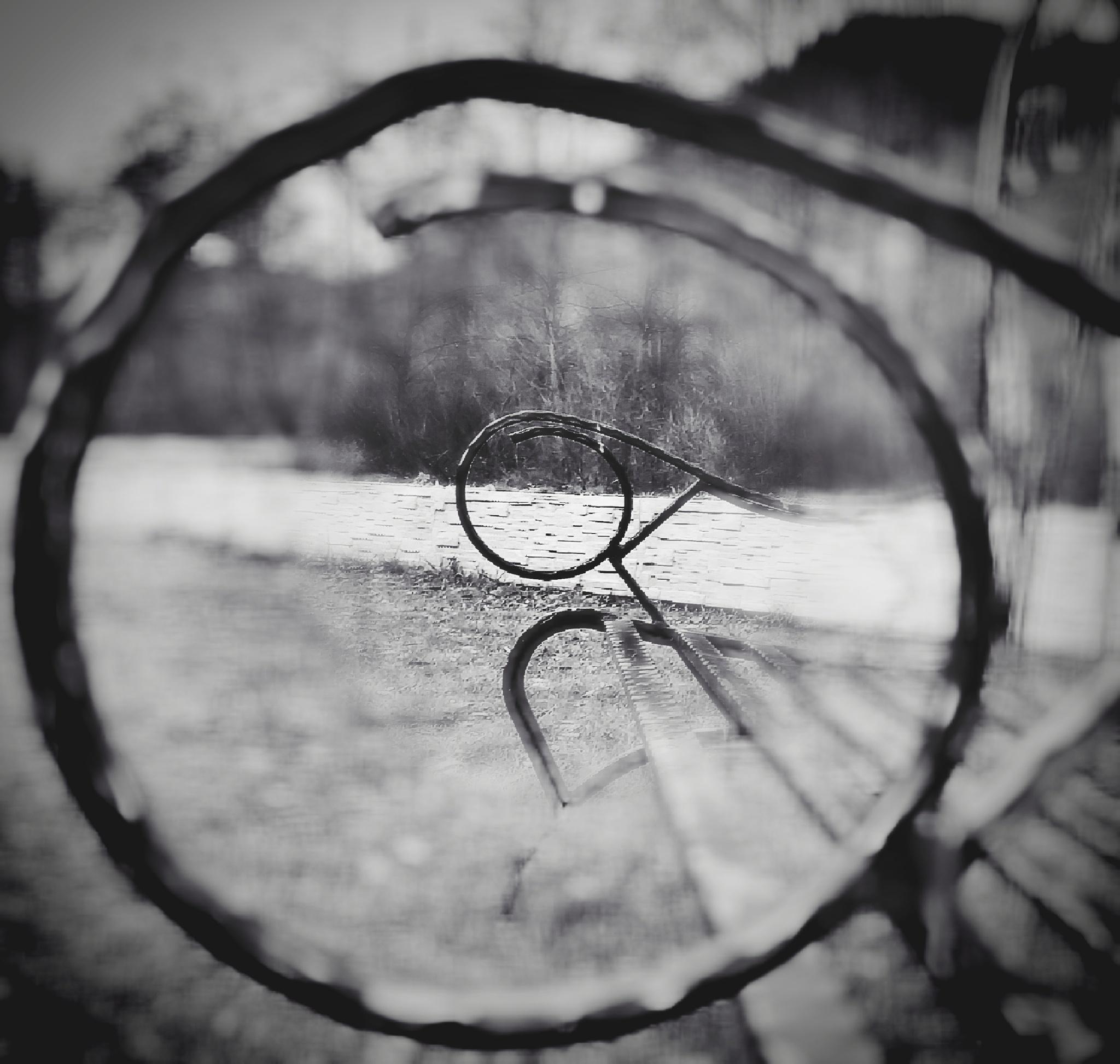 Inner circle  by estraub