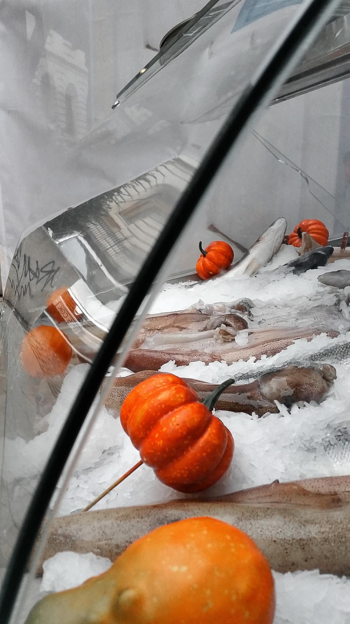 Fish on ice by estraub