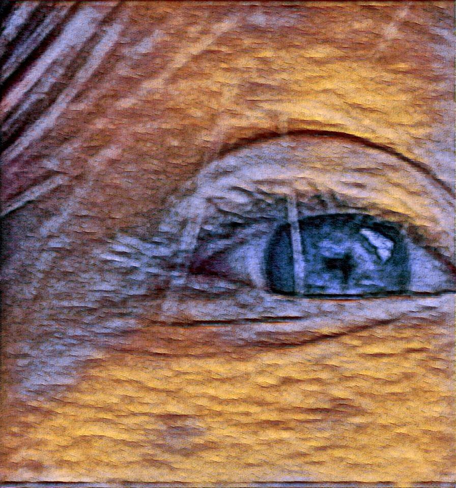 my eye by Amanda Davidson/ Crockett