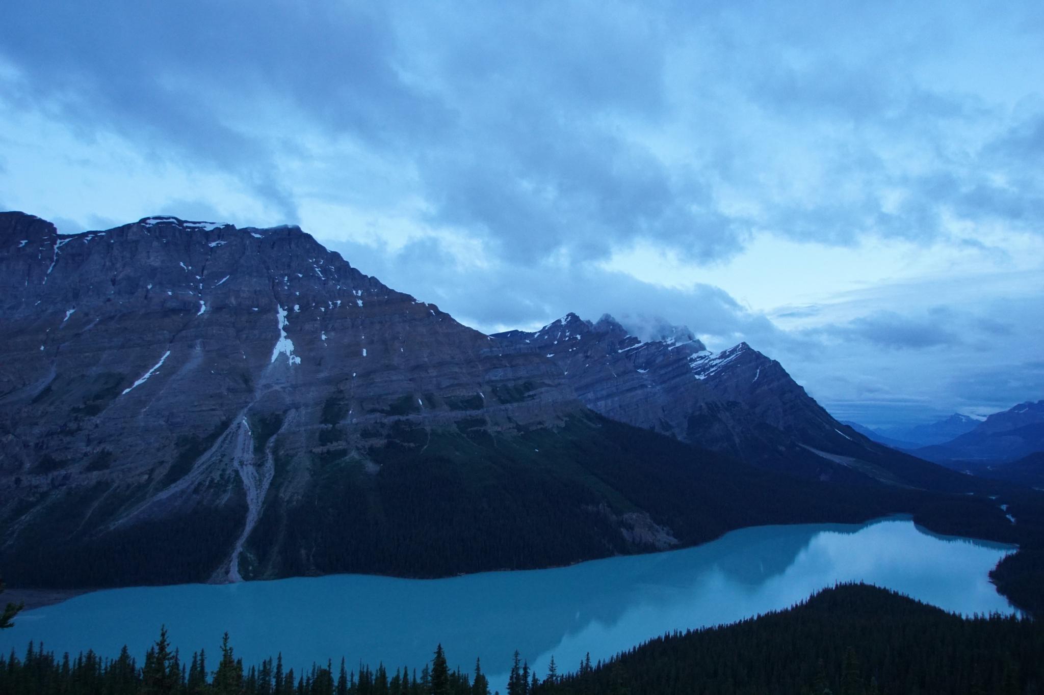 Peyto Lake - Banff National Park by Ryan Kole