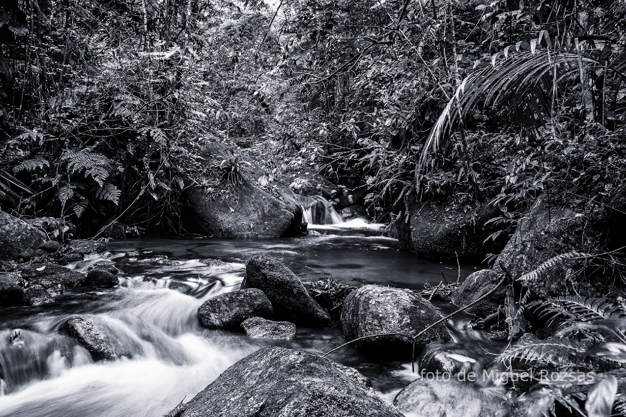 stream near beach by miguel2