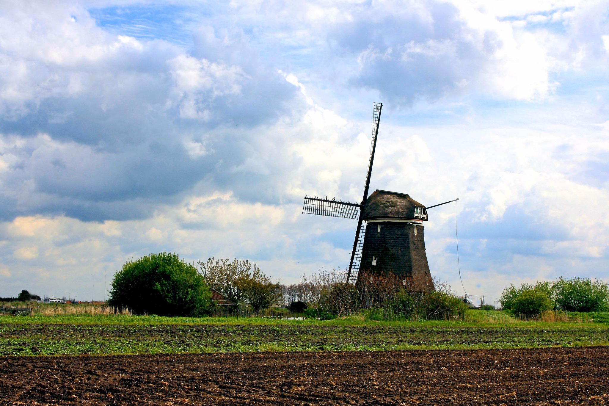 Super Dutch by Bob66