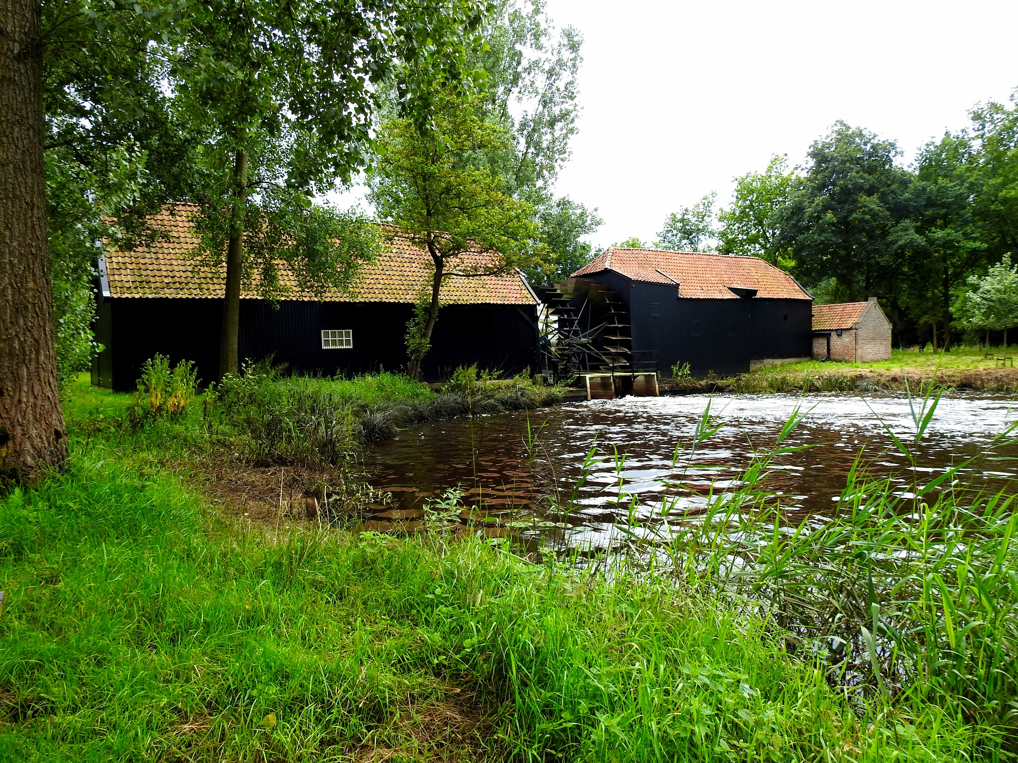 The Collse watermill- Brabant- Holland by Bob66