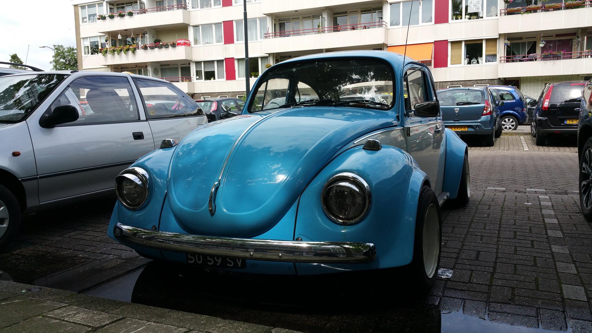 Beetle by Bob66