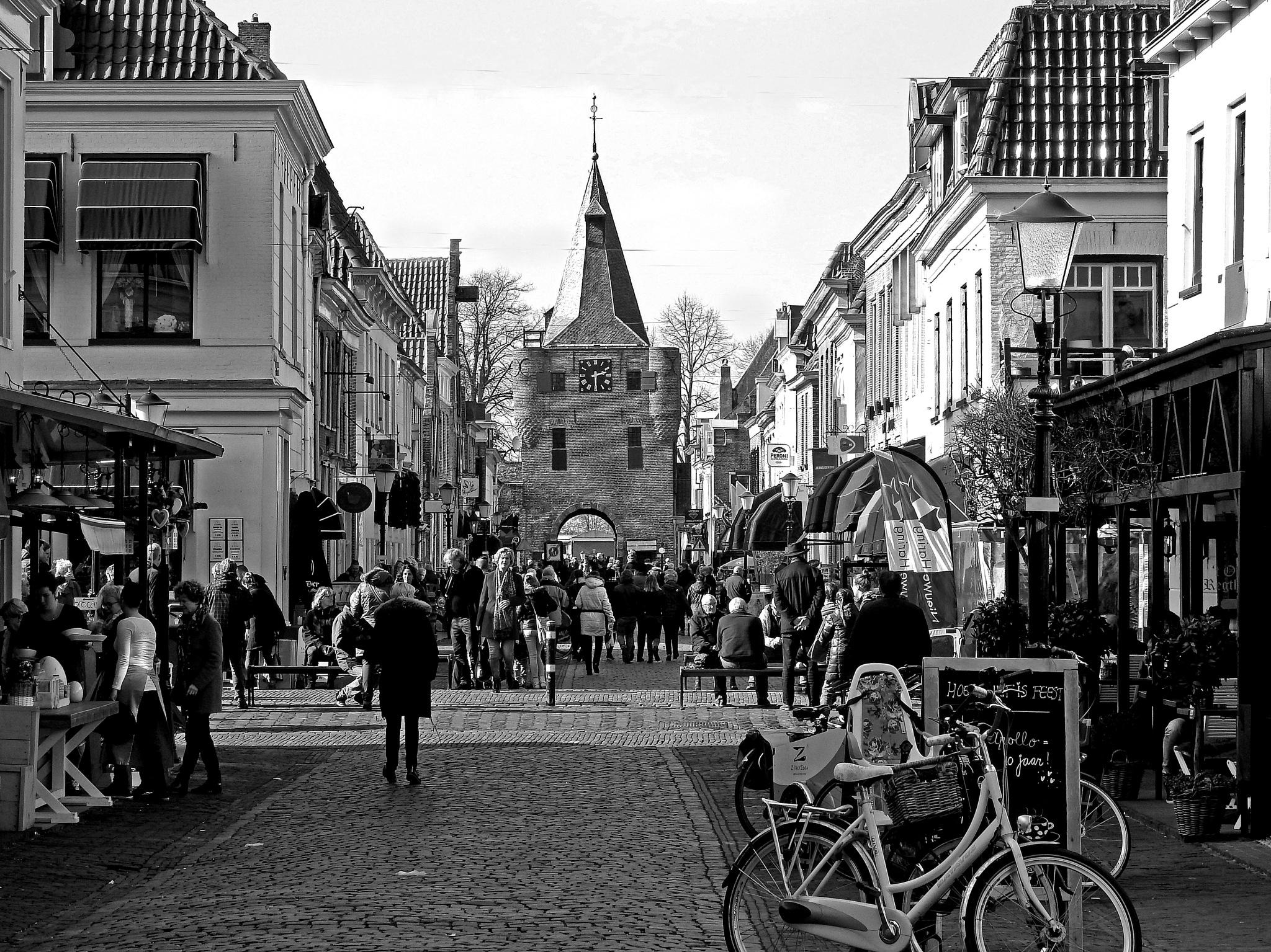 Elburg-Holland in b&w by Bob66