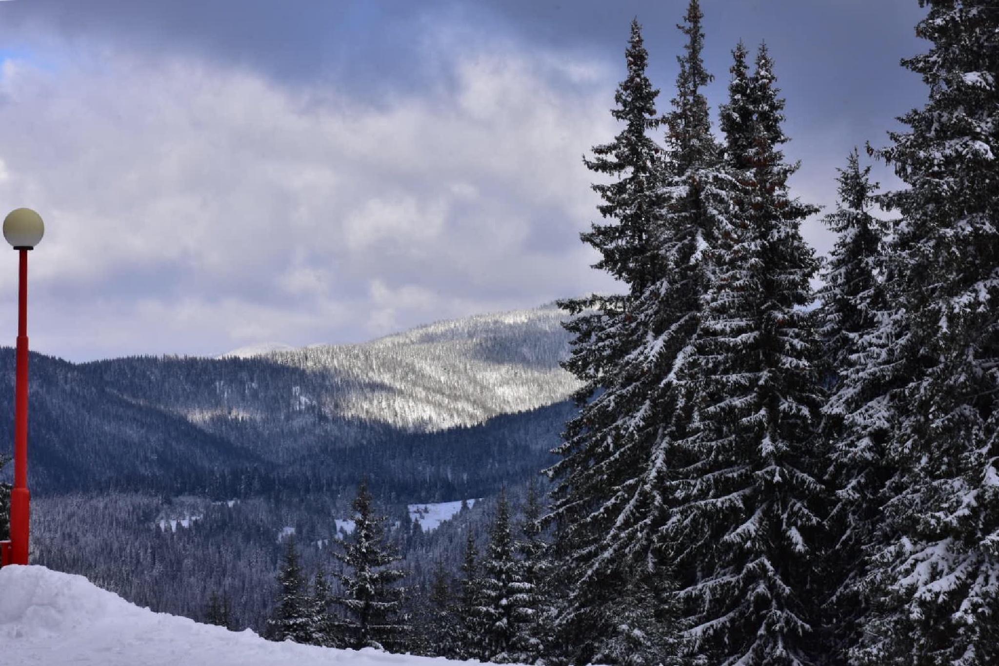 View 2 by Bistra Belcheva