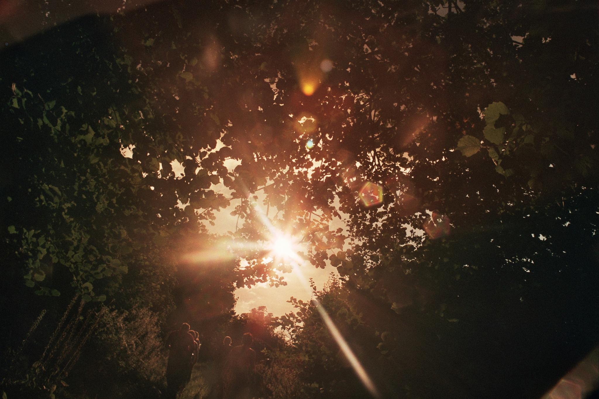 sunset saunter by spreadingresistance