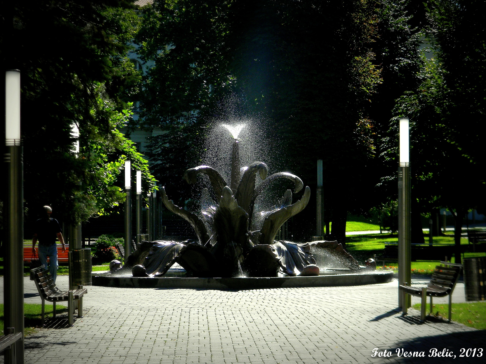 fountain in my city a symbol of unity of water and flower 1945 by Vesna Belic