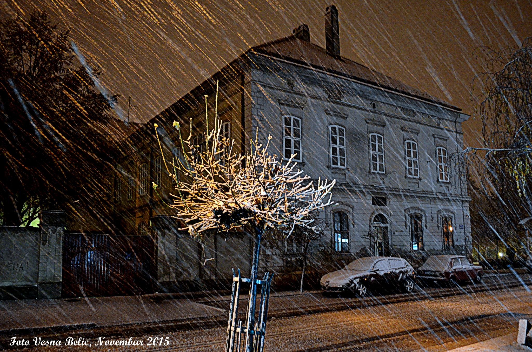 first snow by Vesna Belic