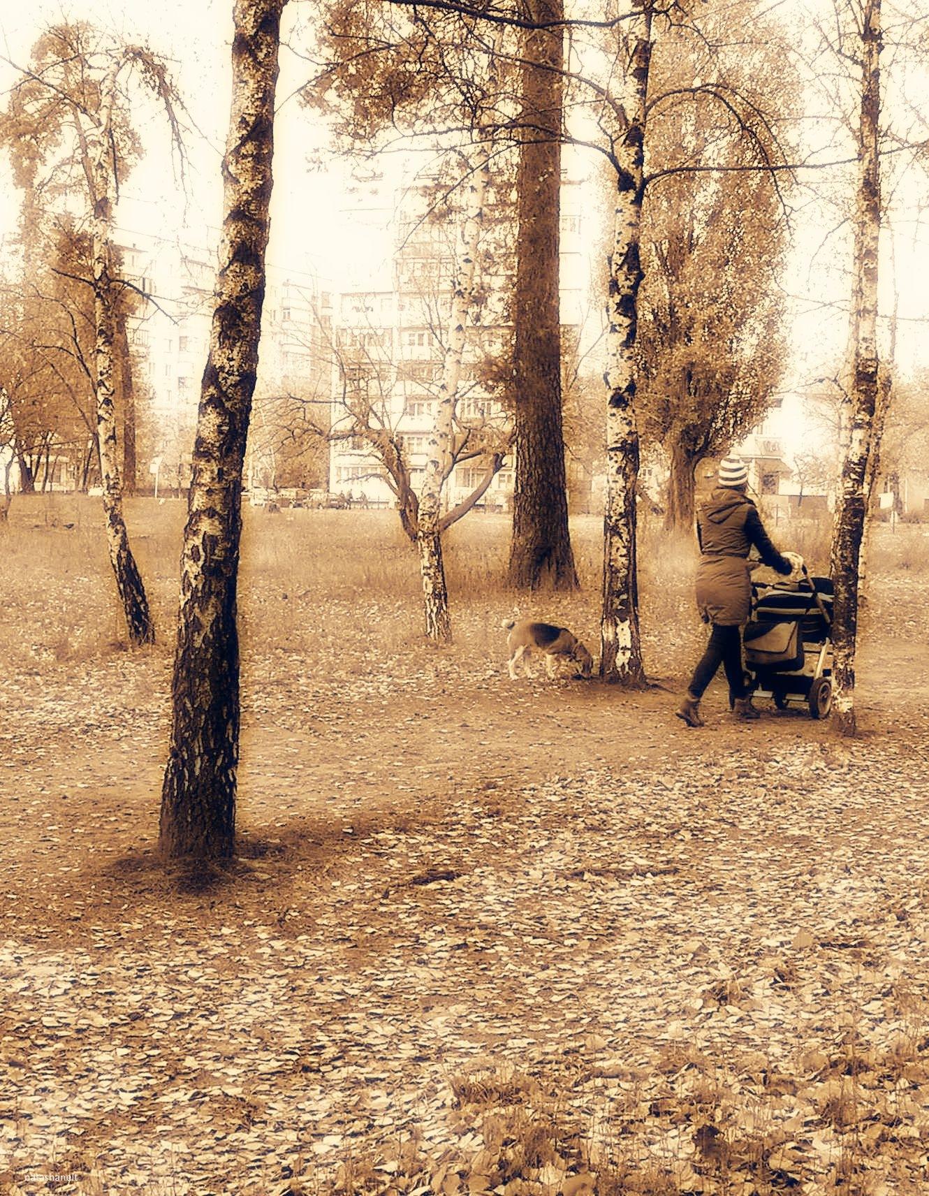Autumn walk by natashaneit