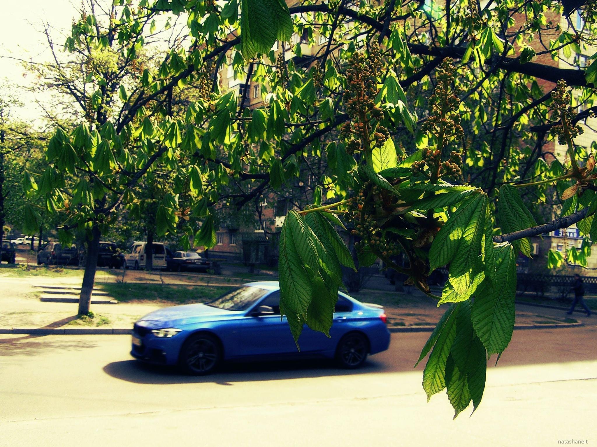 Spring street by natashaneit
