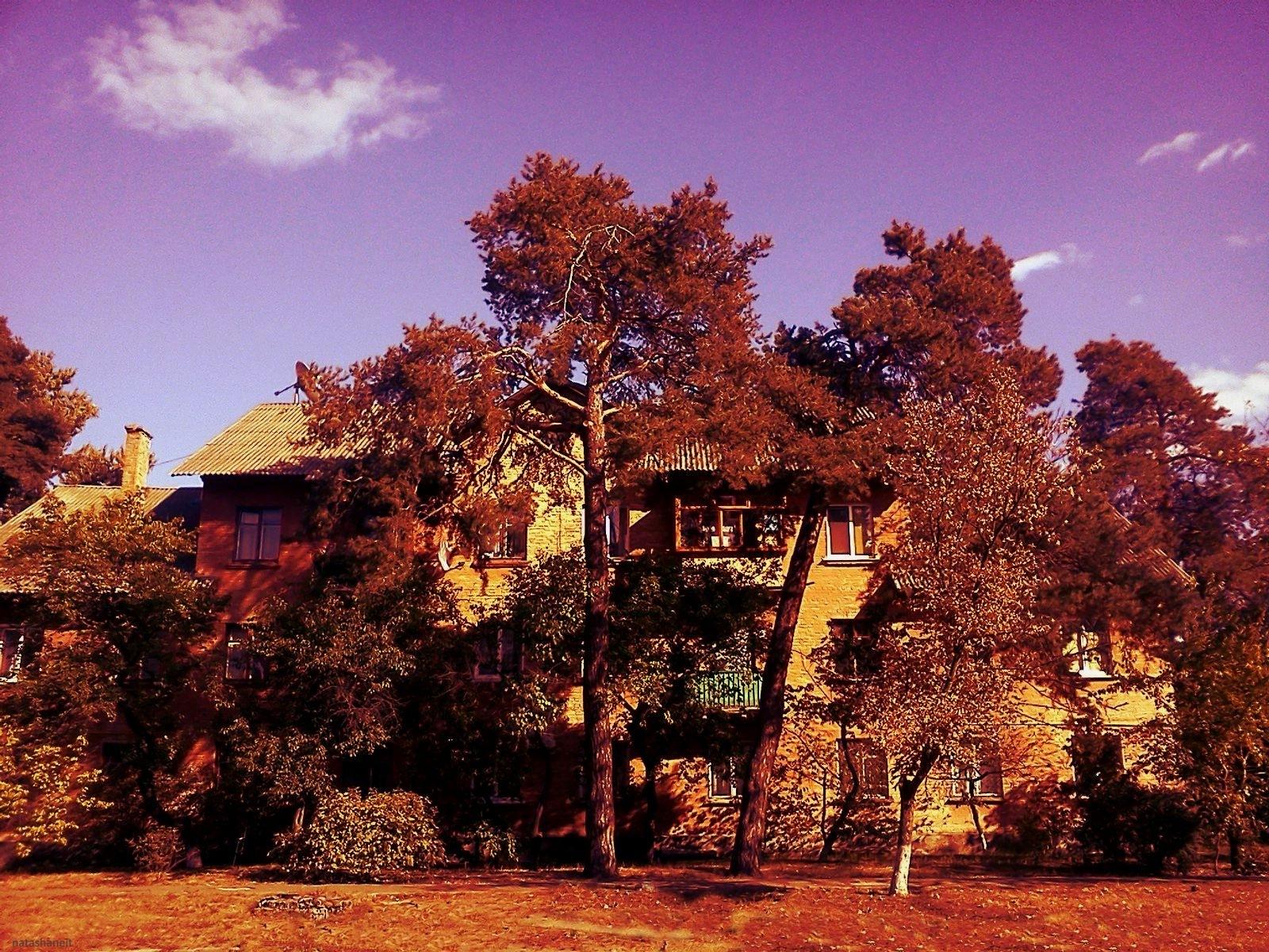Autumn street by natashaneit
