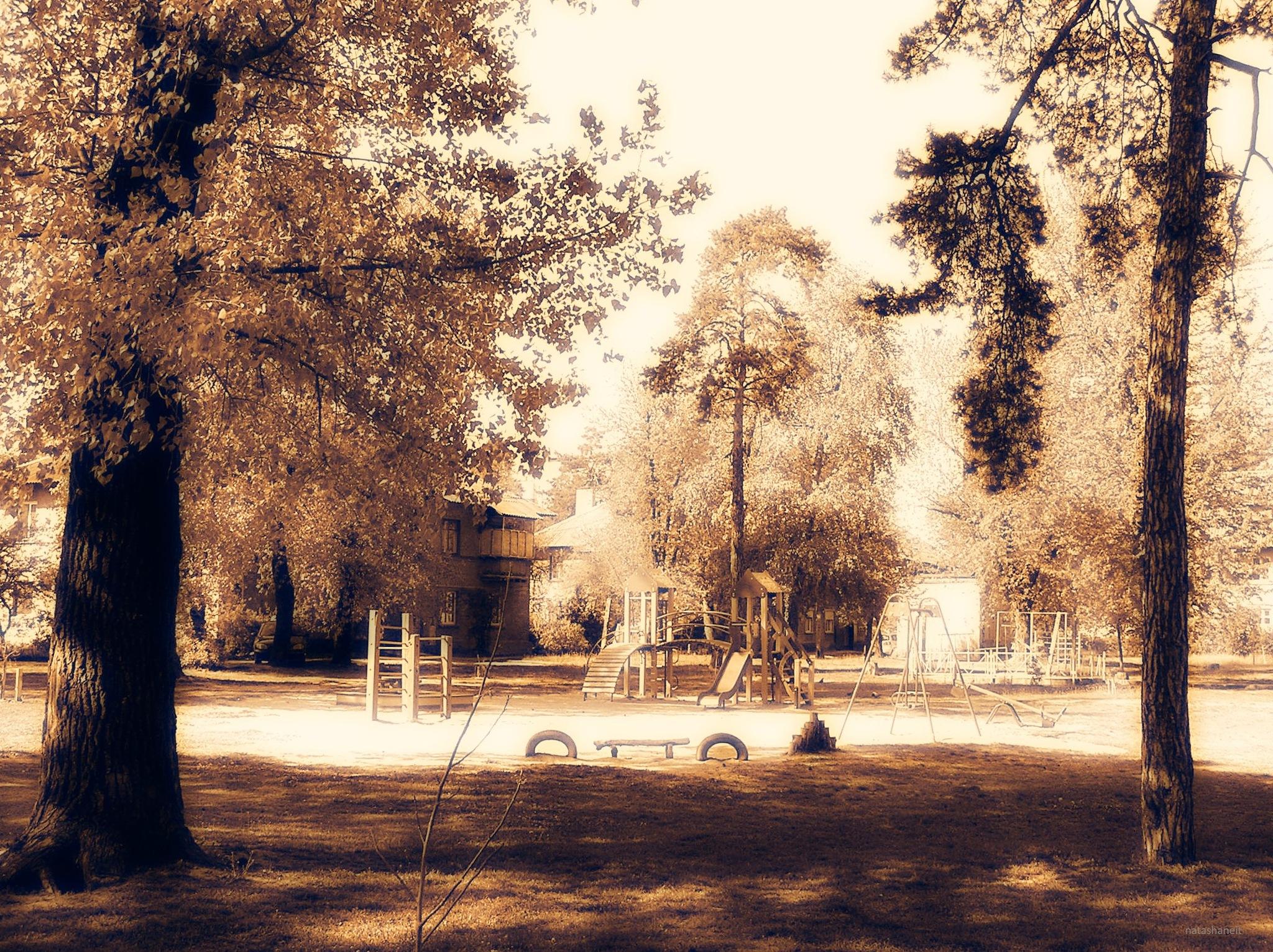 Children's playground in the yard by natashaneit