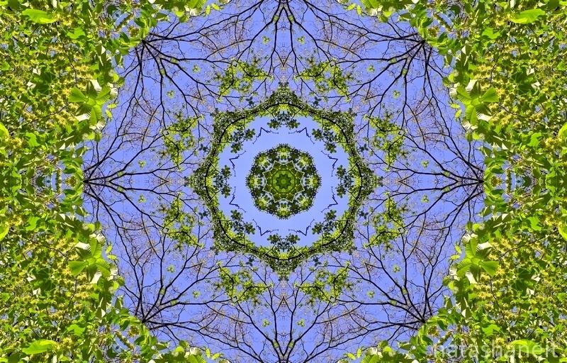 Openwork mandala spring sky and green leaves by natashaneit