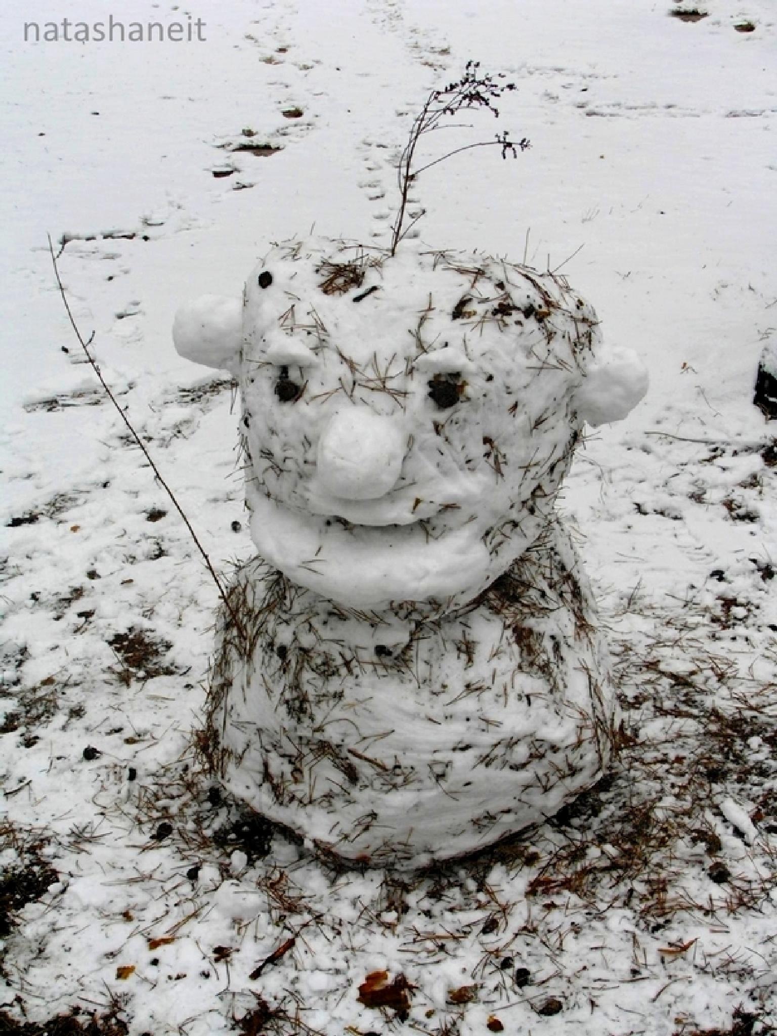 Winter snowman by natashaneit