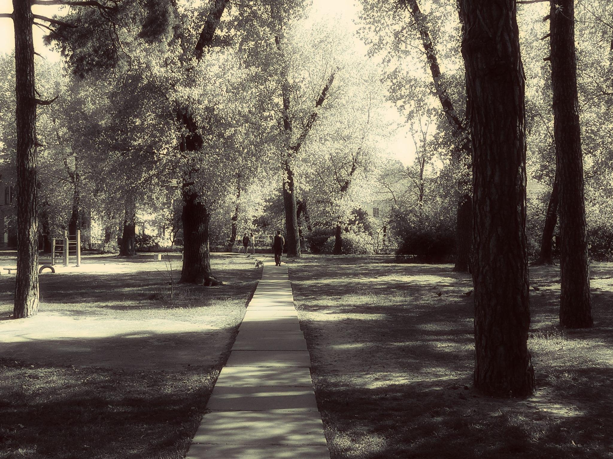 Walk by natashaneit