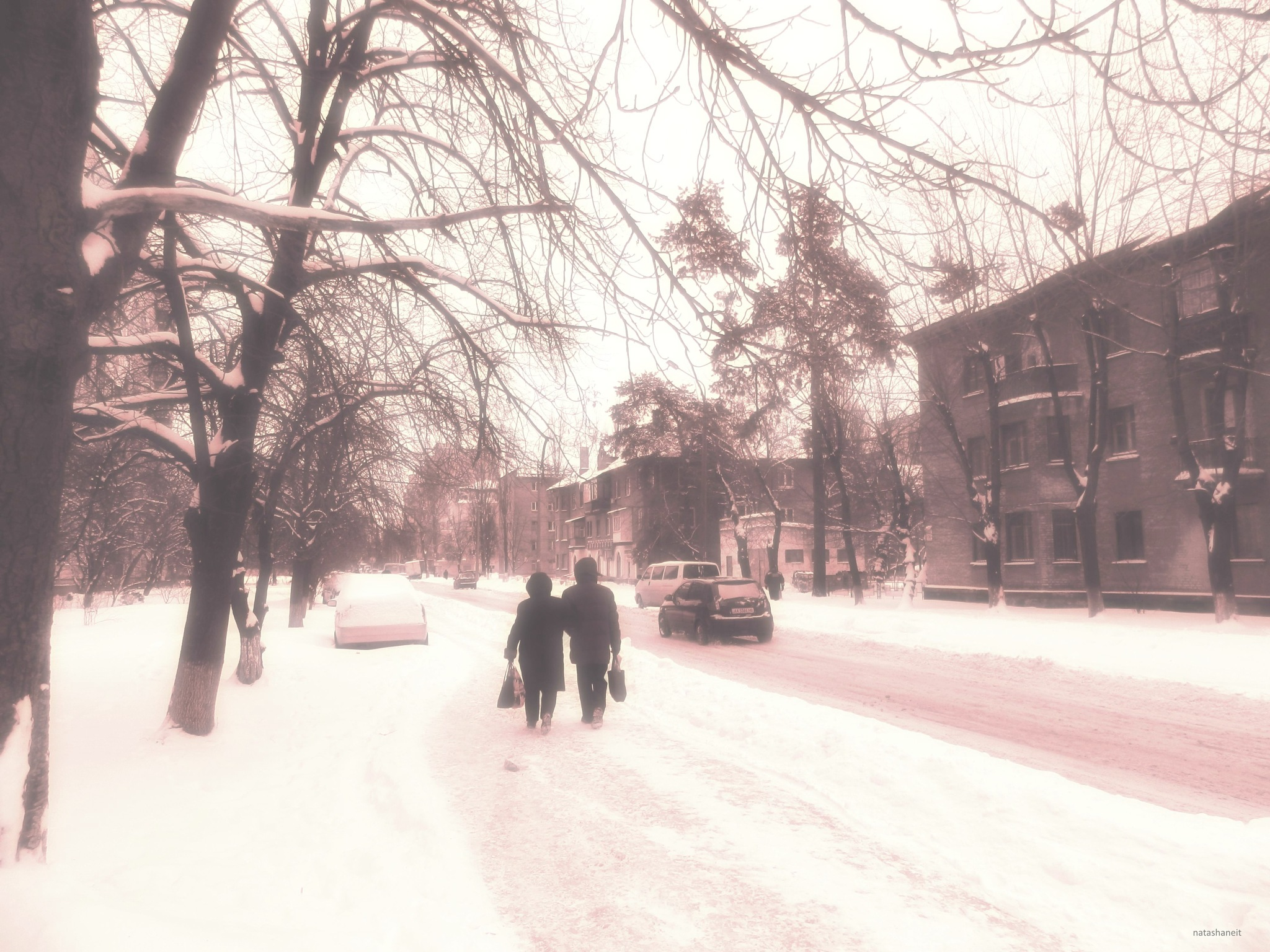Winter walk by natashaneit