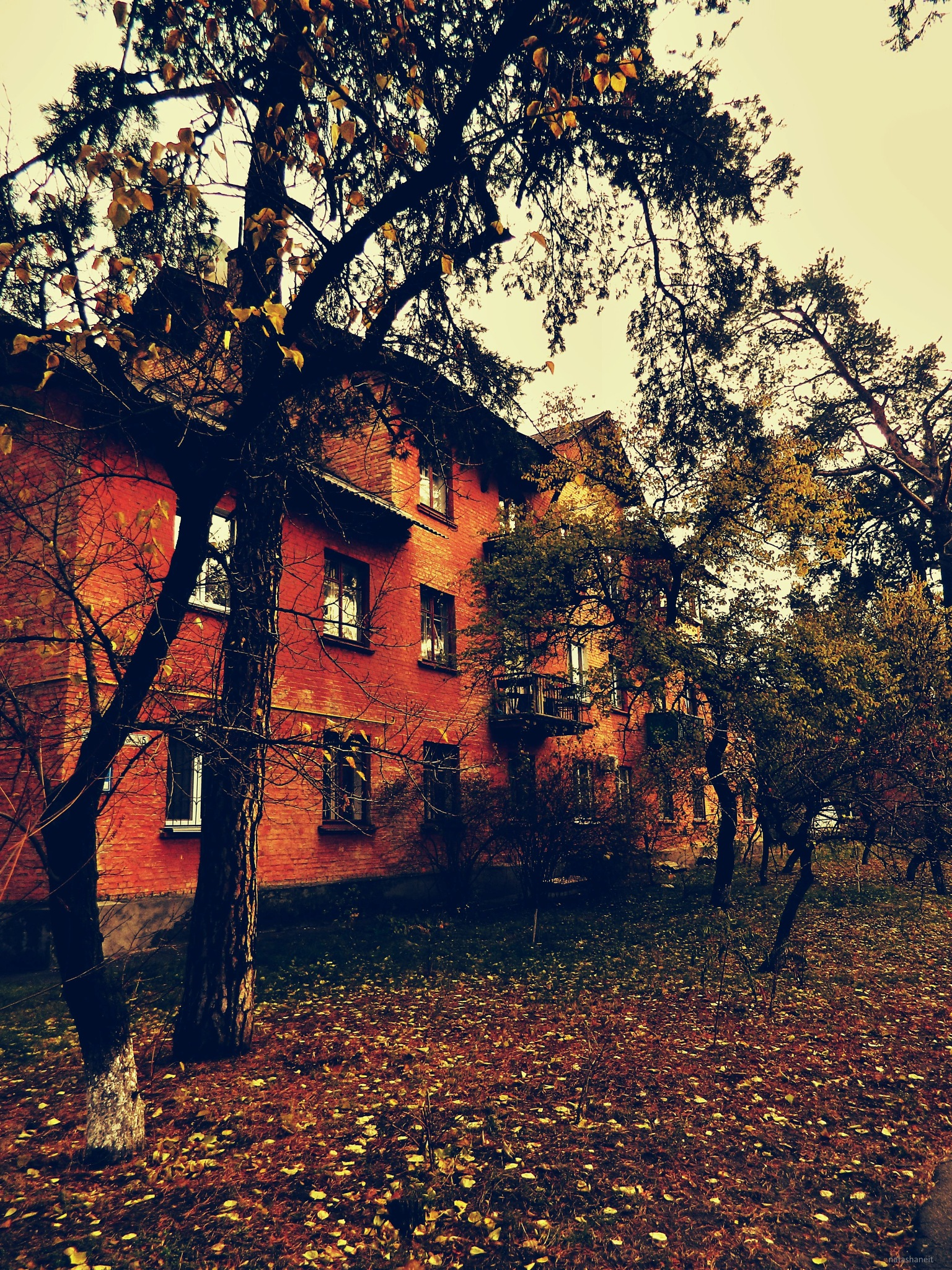 A three-storey house on the autumn street by natashaneit