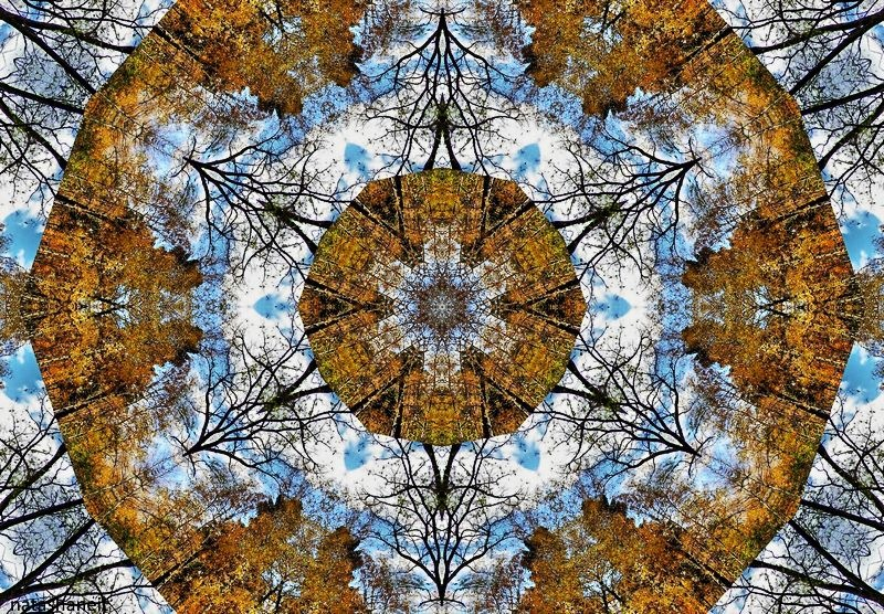 Autumn mandala by natashaneit