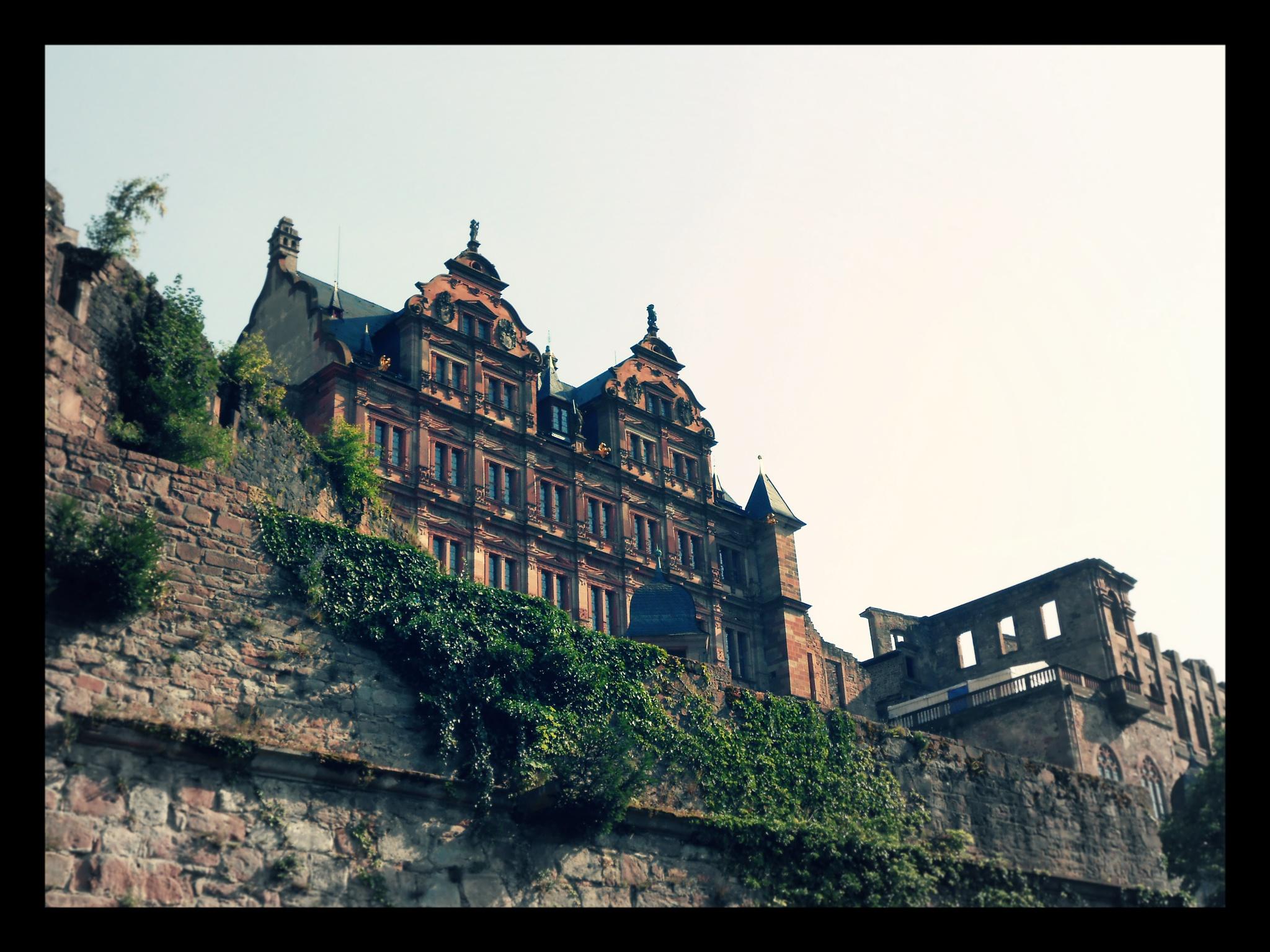 Heidelberg Palace, Heidelberg, Germany (Print) by StevenKlabunde