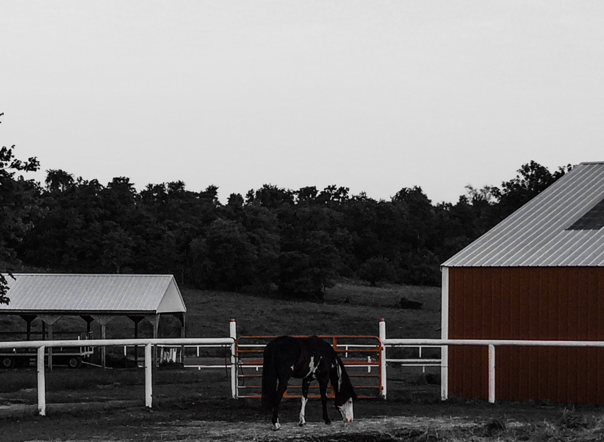 Horse farm by horses1