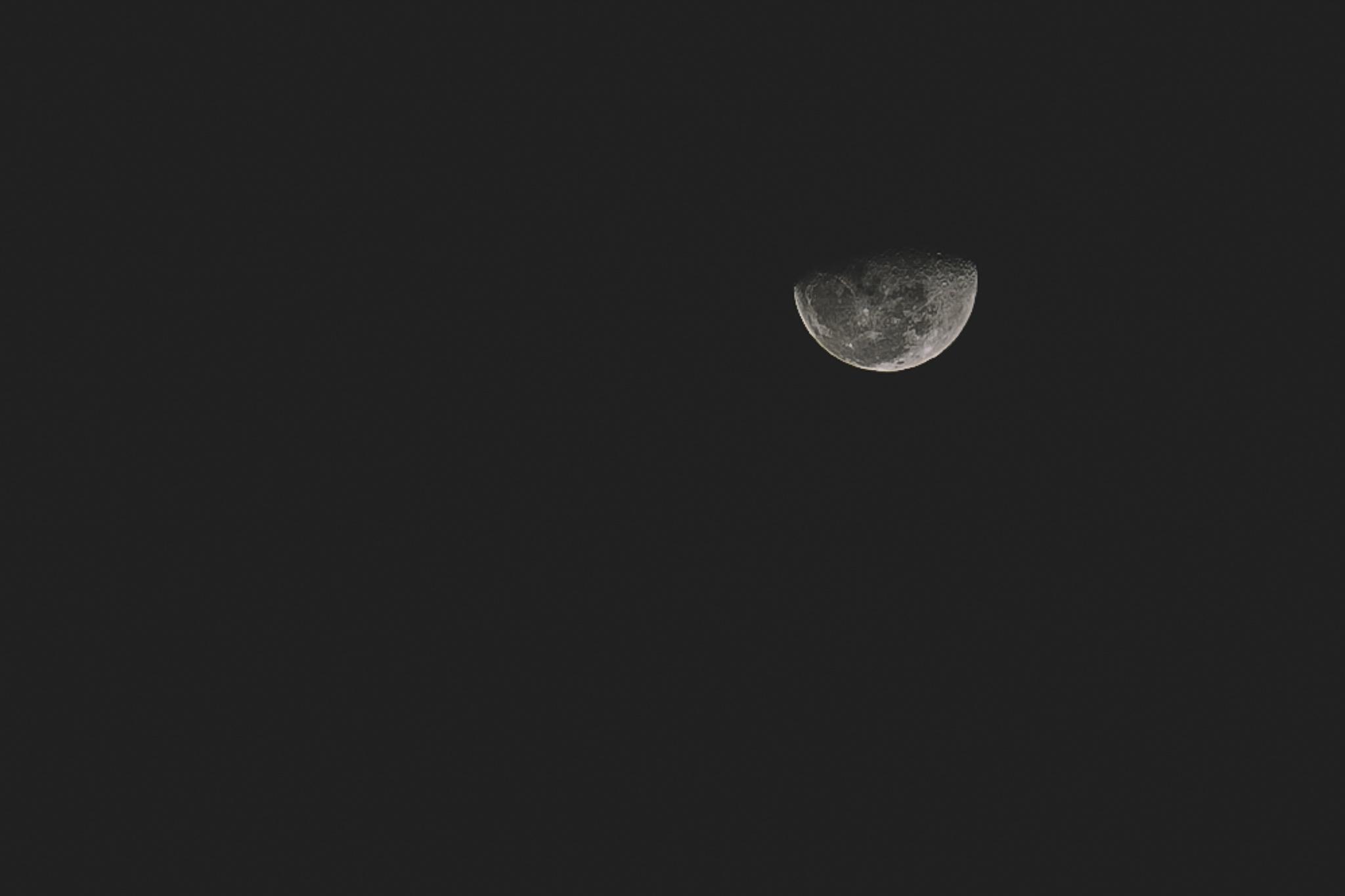 Moon by Davi Pieper